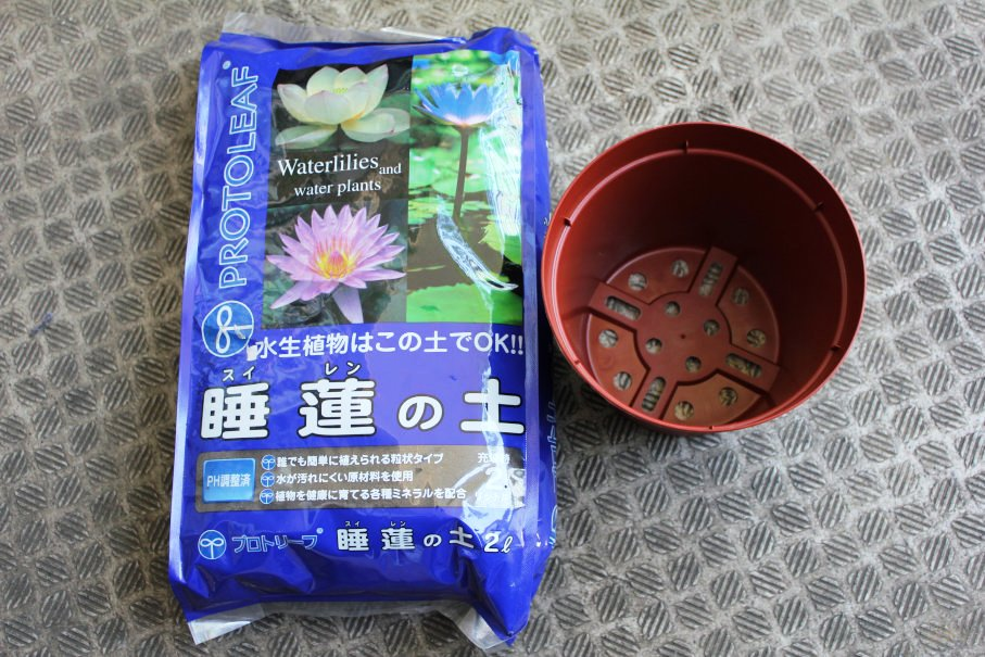 睡蓮の土とプラポット