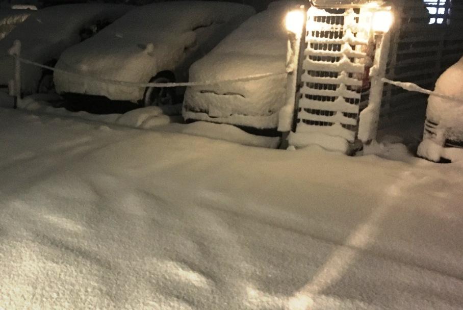関東地方の大雪